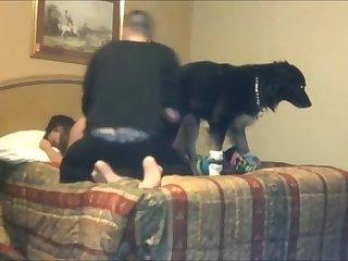 Homem Assistindo Mulher Fudendo Com Um Animal XXX