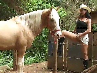 Horse And Girl Xnxxx