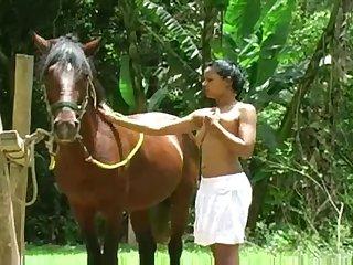 Horsexxxporn