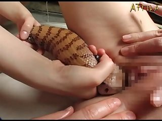 Genki Dgen013 The Snake Coils Around Glare Woman's Soft Body 011