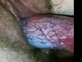 All Internal Enema Action Prepares Their Holes For Mass Animal Porn