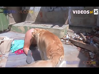 Booty Ass - Animal Porn And Sperm On Ass Compilation