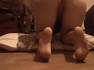 Buttrom K9 Corral Carly Teaser Trim 2 XXX